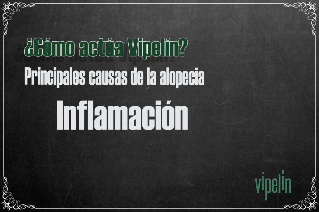 ¿Cómo actúa Vipelín? Inflamación del cuero cabelludo en la alopecia